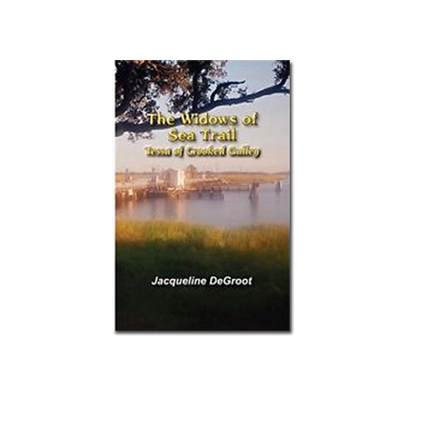 The Widows of Sea Trail- Tessa of Crooked Gulley (Book 2) by Jacqueline DeGroot