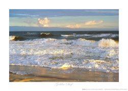 Golden Surf Ken Buckner