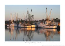 Morning Shrimp Boats Ken Buckner
