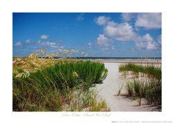 Sea Oats, Sand & Surf Ken Buckner