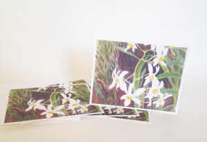 Note Cards Orchids