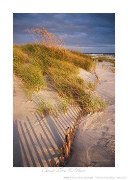 Sand Fence & Dunes Ken Buckner