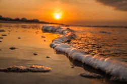 Golden Wave by Dwayne Schmidt