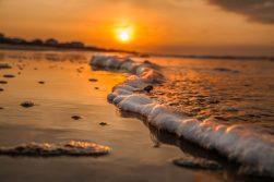 Golden Wave by Dwayne Schmidt
