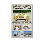 Nature Guide to the Carolina Coast