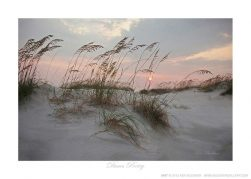 Dunes Poetry - Photo by Ken Buckner