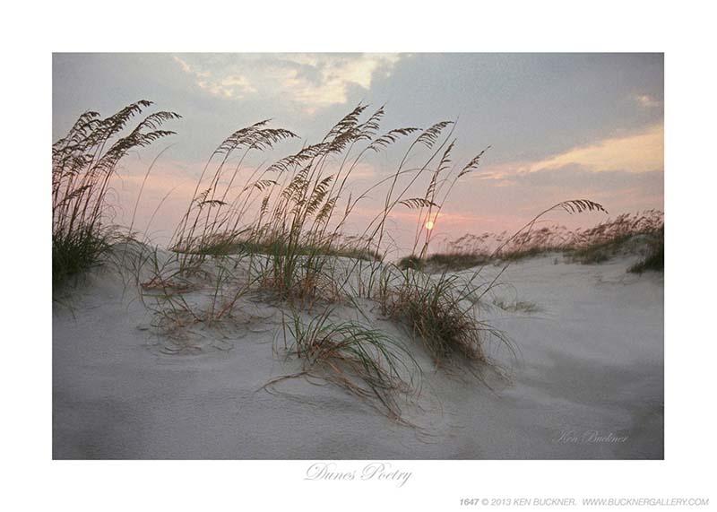Dunes Poetry - Photo by Ken Buckner