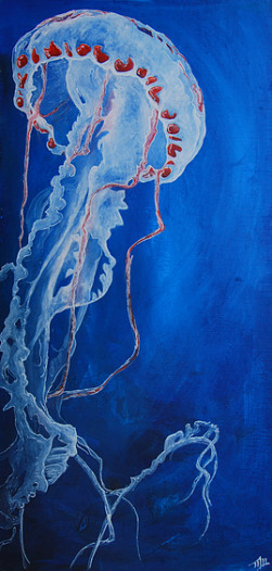 Jellyfish Mike Watters