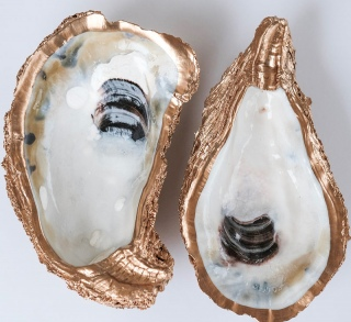 oyster-dishes